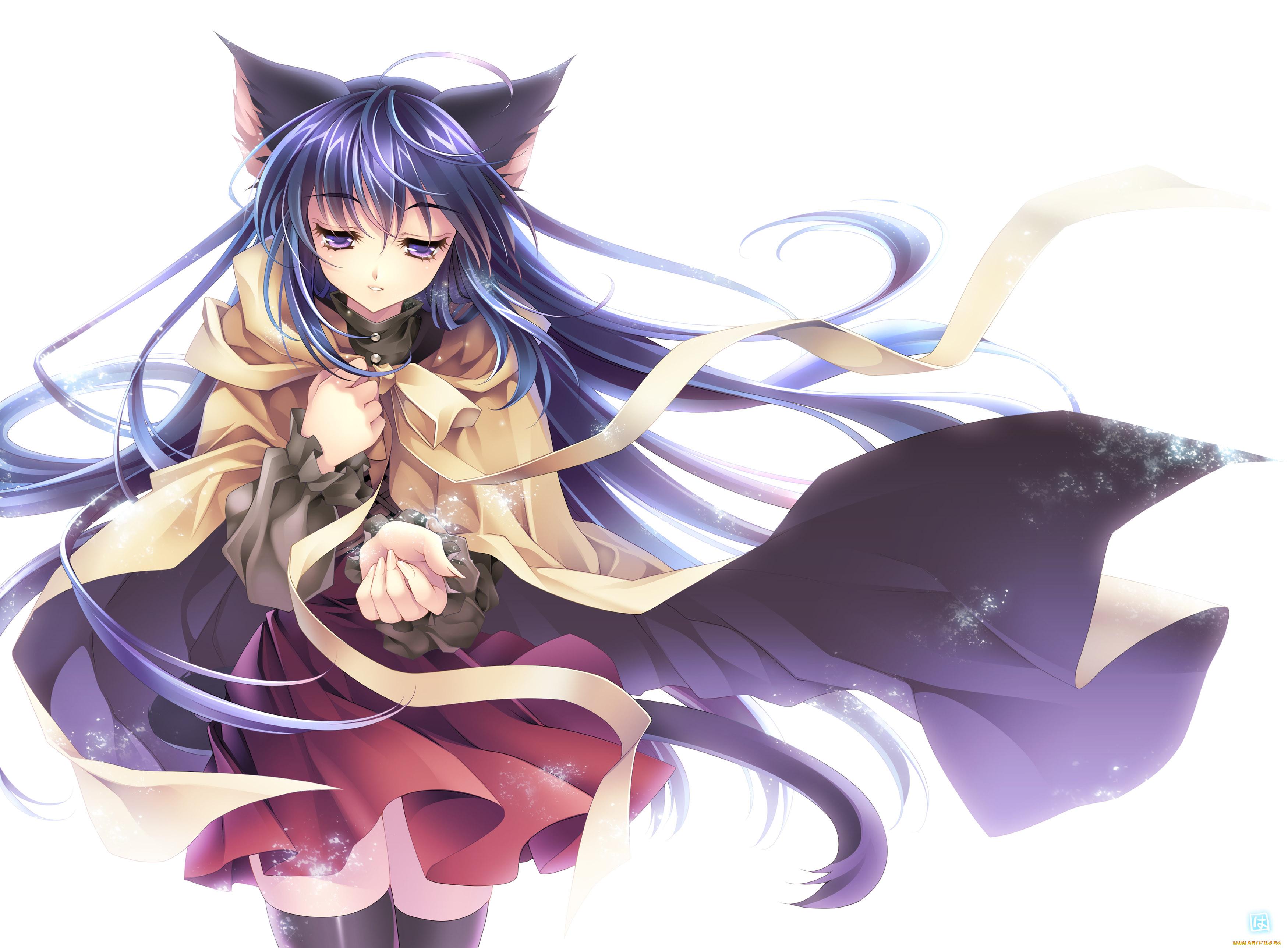 Картинки аниме коты девочки